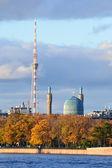 Vista de la san petersburgo. torre y mezquita. — Foto de Stock