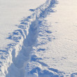 Stock Photo: Footsteps on snow