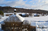 Winter view of small russian village — Stock Photo