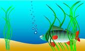 Underwater landscape - perch hiding in the weeds — Stock Vector
