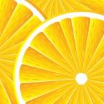 Citrus fruit background — Stock Vector #7412798