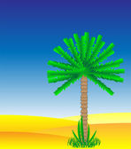 Palm in the desert — Stock Vector
