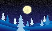 зимний пейзаж ночью — Cтоковый вектор