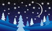 Winter landscape at night — Stock Vector