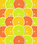 Citrus fruit background - vector — Vector de stock