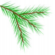 Royalty-Free Stock Vectorafbeeldingen: Fir tree branch