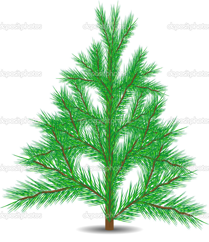 Green christmas fur-tree isolated on white background — Stock Vector #7507736