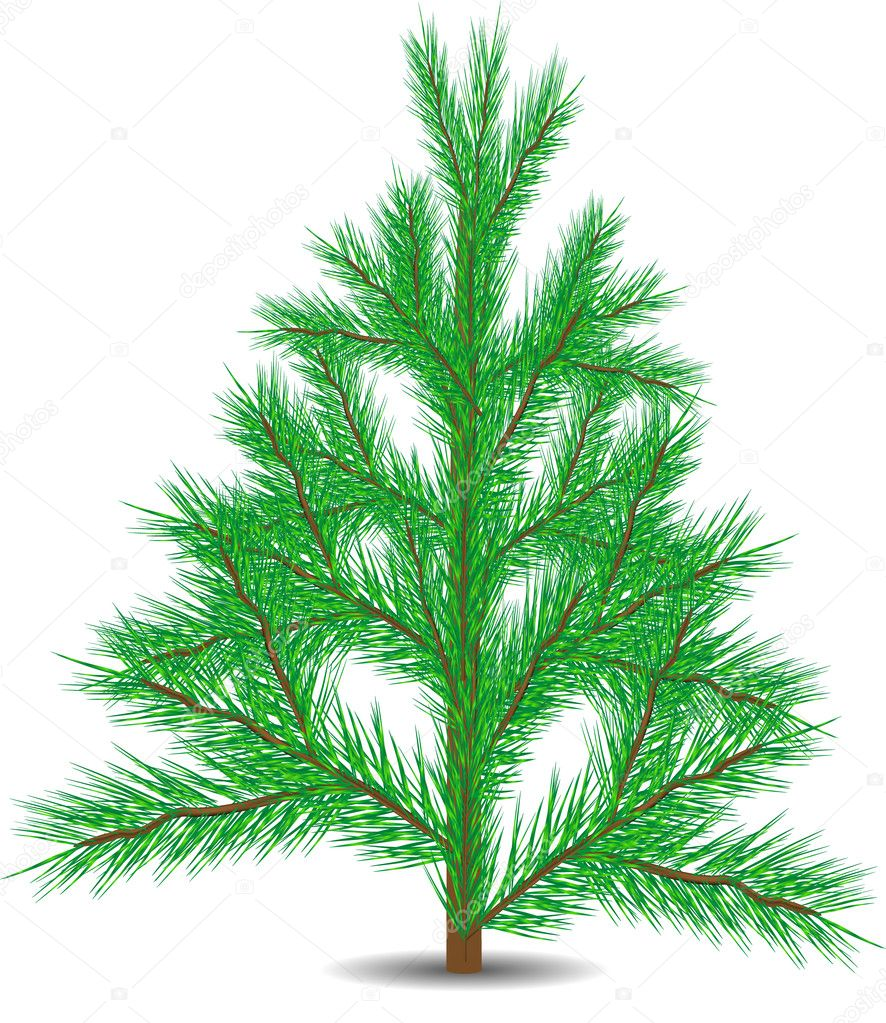 Green christmas fur-tree isolated on white background — Векторная иллюстрация #7507736