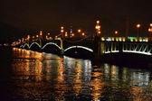 Night view of the Troitsky Bridge — Stock Photo