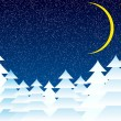 Winter landscape at night — Imagen vectorial