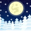 Winter landscape at night — Stock Vector