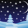 Stock Vector: Winter landscape at night