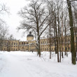 Winter in Gatchina park — 图库照片
