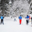 Stock Photo: Skiers in winter forest.