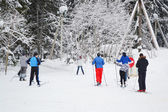 Skiers in the winter forest. — Foto Stock