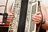 Musician playing accordion — Stock Photo