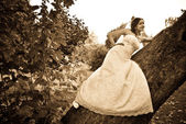 Bride on a tree — Stock Photo