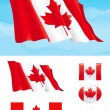 Set of Canadian flag — Stock Vector