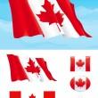 набор канадский флаг — Cтоковый вектор