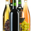 Composition bottles of wine of different sort — Foto Stock