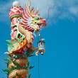 Chinese style dragon statue in chinese temple — Foto de Stock