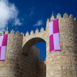Walls of Avila — Stock Photo #7274288