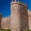 Walls of Avila — Stock Photo #7284677