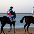 Horse race on Sanlucar of Barrameda, Spain, August 2011 — Stock Photo #7286410