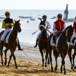 Horse race on Sanlucar of Barrameda, Spain, August 2011 — Stock Photo #7286430