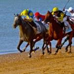 Horse race on Sanlucar of Barrameda, Spain, August 2011 — Stock Photo