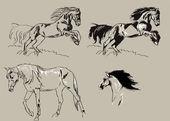 Jumping horses — Stock Photo