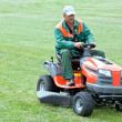 Professional lawn mowing — Stockfoto