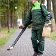 Landscaper cleaning the track using Leaf Blower — Stock Photo