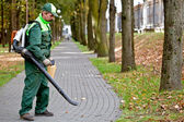 Landscaper with Leaf Blower — Stock Photo