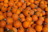 Pumpkins piled up for sale — Stock Photo