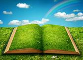Open magic book — Stock Photo