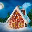 Homemade gingerbread house — Stock Photo #7596158