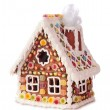 Homemade gingerbread house — Stock Photo #7597756