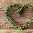 Stock Photo: Green heart