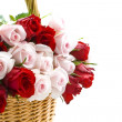 Special roses for you — Stock Photo