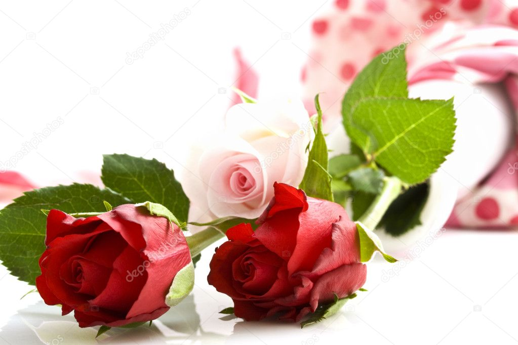 Three beautiful roses close up with a spotted vase on a white background — Stock Photo #7125246