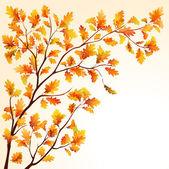 Gałąź jesień dąb — Wektor stockowy