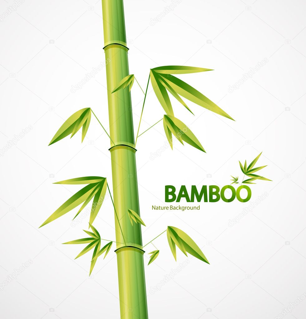 Bamboo stem design for your project — Stock Vector #7311532
