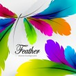Stok Vektör: Vector colorful feather background