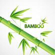 Vector bamboo background — Stock Vector