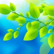 Royalty-Free Stock Vectorielle: Green leaves on the blue sky vector