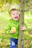 The small beautiful boy walks on a green glade with an apple — Stock Photo