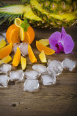 Citrus fruits and ice — Stock Photo
