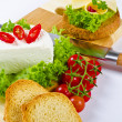 Curd (Polish Twarozek) - Stock Photo