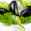 Mussels — Stock Photo #6869319